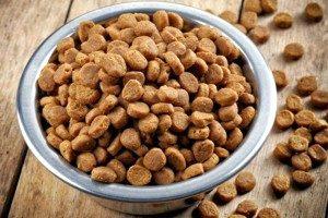 Сухой корм для кастрированных собак