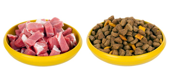 что лучше сухой корм или натуралка