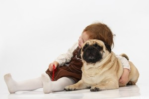 пес в квартире с ребенком