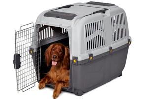 контейнер для животных