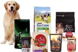 Пес и упаковки с кормами