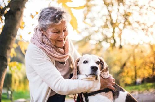 пенсионерка с собакой