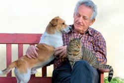 пожилой мужчина с собакой и кошкой