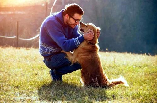 счастливый воспитанный пес с хозяином